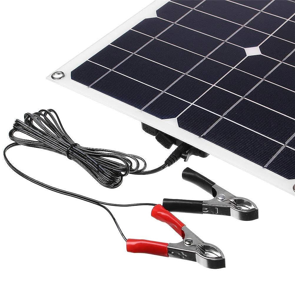クール征服十億ソーラーパネル デュアルUSB&ケーブル付きソーラーパネル18V / 5V 25Wポータブル単結晶シリコン太陽電池パネル ソーラーチャージャー (Color : Black, Size : 25W)