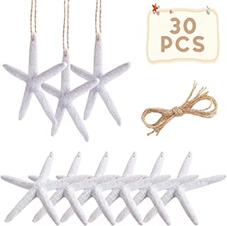 PartyTalk 30pcs Resin Pencil White Starfish Decor for Weddings, Dried Hanging Starfish Christmas Tree Ornaments with Hemp Rope for Home and Craft Projects, 4-Inch