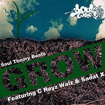 Grow (feat. C Rayz Walz & Sadat X)