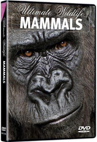 Ultimate Wildlife: Mammals