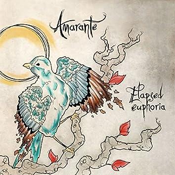 Elapsed Euphoria