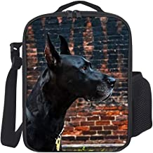 SARA NELL Lunch Tote Insulated Thermal Lunch Bag Black Dachshund Funny Dog Lunch Backpack Lunch Box Carry Case for Adults Kids Nurse Teacher Work Outdoor Travel Picnic
