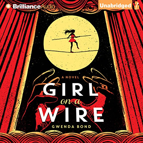 Girl on a Wire audiobook cover art