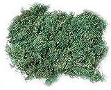 CAILI Musgo Artificial, Artificial Lichen,Planta Simulada de Musgo Verde,Ideal para Decorar Plantas, Flores o Guirnaldas,Decoración del Patio del Jardín de Casa (600g)