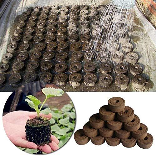 YAYANG Flower Pot 10/20/50 Pcs 30mm Jiffy Coco Peat Pellets végétales Graines de démarrage de palettes Bloc Pro Seedling Sol Outils de Jardin Facile à Utiliser Durable (Sheet Size : 1pc)