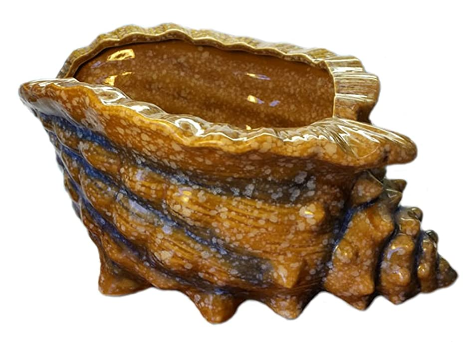 Ceramic Conch Shell Tiki Drink Bowl - Limited Edition - Retired