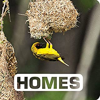 Homes (Picture This)