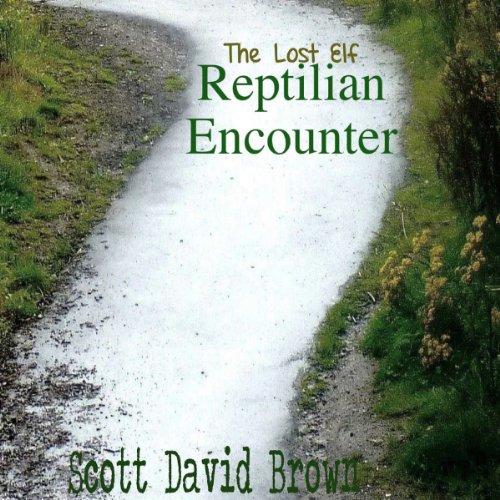 Reptilian Encounter: The Lost Elf, Book 2