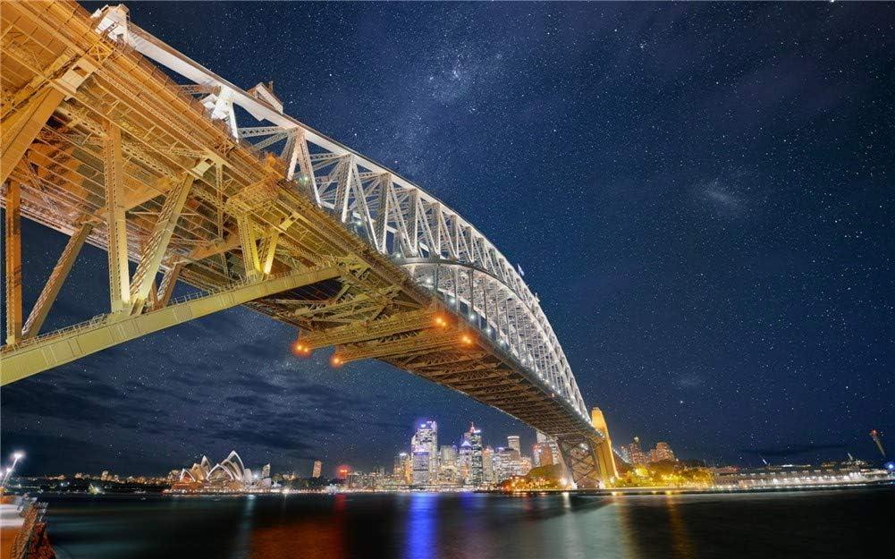 5D DIY Diamond Painting by Number Sydney Bridge Harbour Limited price Rou Ranking TOP8 Kits