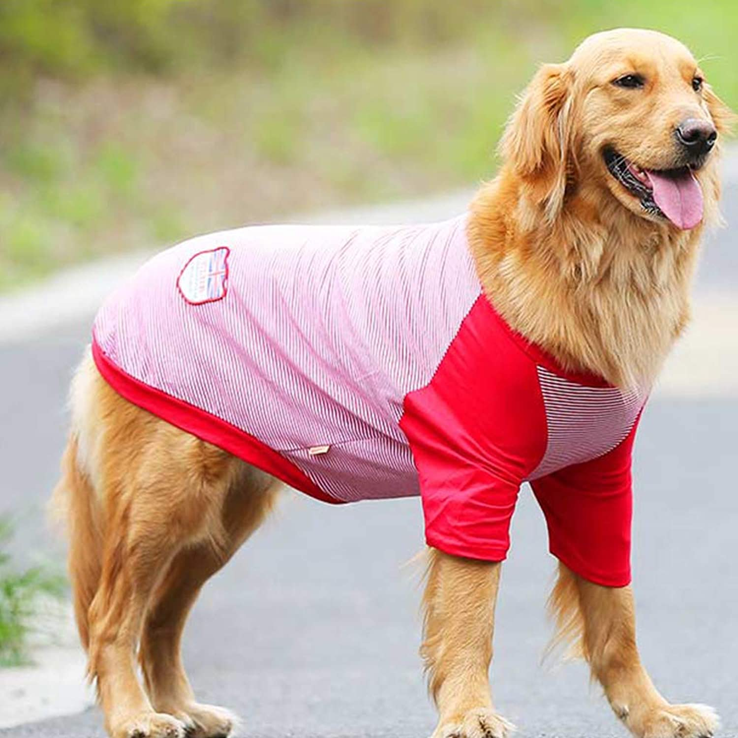 Pet TShirt Summer Clothe,Summer Shirt Small Dog cat pet Clothe Vest t Shirt,pet Clothes for Summer, Apparel Large Pet Clothes for Dog Cute Soft Vest,Red,4XL