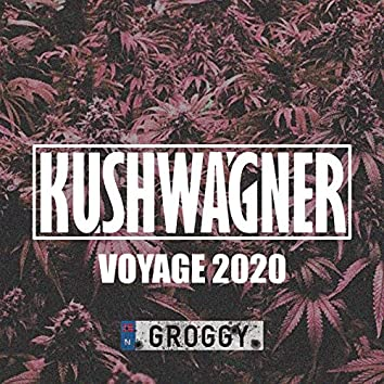 Voyage 2020