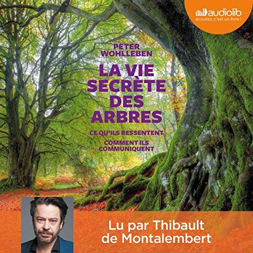 الحياة السرية للأشجار. كيف يشعرون - كيف يتواصلون