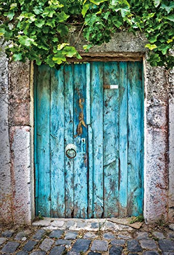 Old Rural House Village Porch Yard Vine Door Spring Baby Photo Background Photography Backdrop Photocall Photo Studio A12 1.5x1m