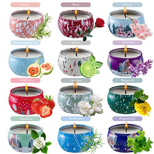 SYF Duftkerzen Geschenkset,12St. 2.5OZ Natürliches Sojawachs Aromatherapie Kerzen Mit Anhaltendem Wach Tragbare Reise-zinnkerzen Für Stressabbau Und Entspannung des Körpers für Frauen