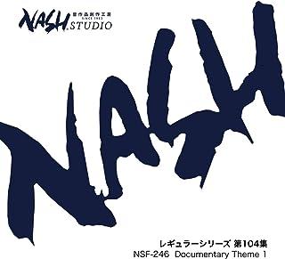 Documentary Theme 1 (NSF-246 / レギュラーシリーズ 第104集)