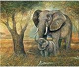 FJKEFJH Kits de Punto de Cruz Contado,Elefante y bebé elefante 40X50cm 14CT Conjunto de Kit de Punto de Cruz de Bordado DIY Tela a Mano Hilos de Color Dibujo de Aguja de paño de algodón