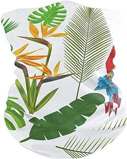 Tropical Leaves Headband Womens Bandana Multifunctional Mens Balaclava, Neck Warmer, Face Mask, Tube Facemask
