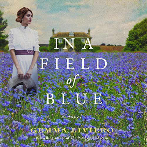 In a Field of Blue cover art