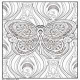Trends International Butterfly 18'x 24' Coloring Poster