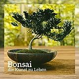 Bonsai - die Kunst zu Leben; Zen-Zustand,...