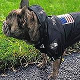 The Dog Face, modische Hundekleidung, Jacke, Polyester, Haustier-Outfit, niedliche Hunde-Dekoration, Mäntel, für Kostüm, Geburtstagsparty