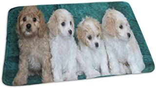 Changing Pad Stunning Cavachon Puppies Dog Baby Diaper Incontinence Pad Mat Great Toddler Children Mattress Pad Sheet for Any Places for Home Travel Bed Play Stroller Crib Car