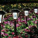 GIGALUMI Solar Pathway Lights 8 Pack, Solar Garden Lights Outdoor Waterproof, Automatic...