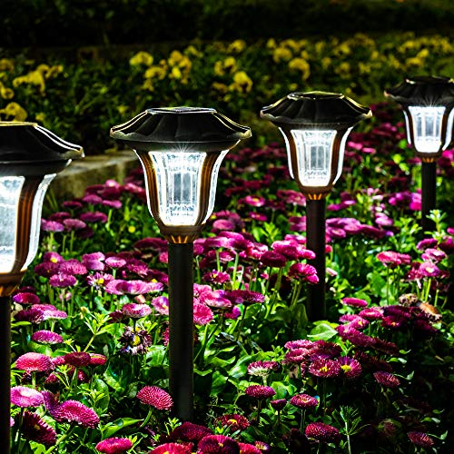 GIGALUMI Solar Pathway Lights 8 Pack, Solar Garden Lights Outdoor Waterproof, Automatic Solar Powered Walkway Lights for Yard, Landscape, Lawn, Patio, Path, and Driveway (Cold White)
