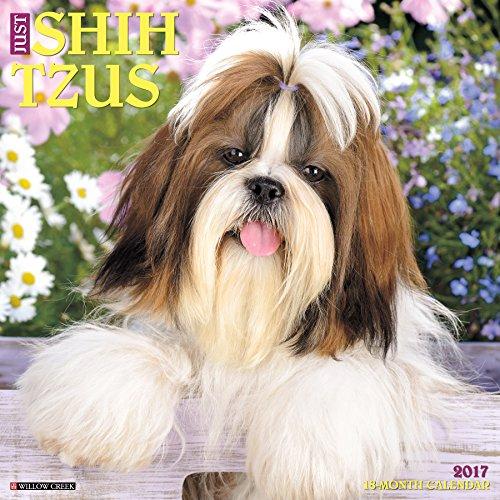 Just Shih Tzus 2017 Wall Calendar (Dog Breed Calendars)