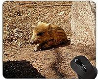 かわいい豚コンピューターマウスパッド、イノシシ面白いかわいい貯金箱ゲーミングマウスパッド