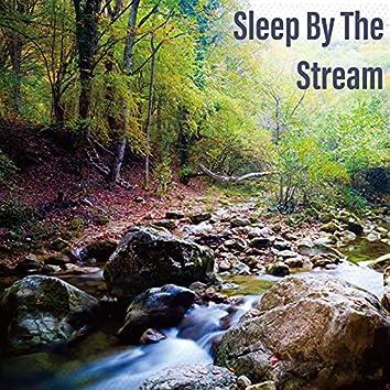 Sleep By The Stream