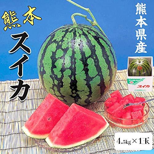 スイカ4.5kg熊本県産1箱(1玉)高級すいか/等級:秀(赤)|化粧箱入り贈答用ギフト