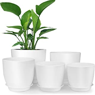 Plant Pots for Plants Set of 6 Indoor and Outdoor Galvanized Metal Planter Flower Pot for Office Decor and Patio Garden