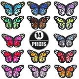 Litthing Farfalla Ferro Patch Farfalla Toppe Termoadesive in Tessuto Colorati Butterfly Ad...