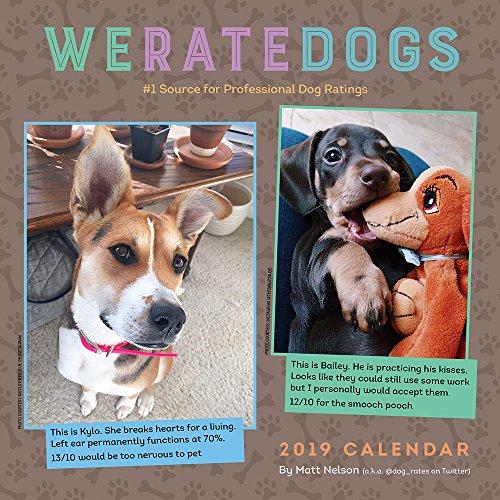 WeRateDogs 2019 Wall Calendar