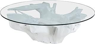 Dimond Home Teak Root Coffee Table, 47