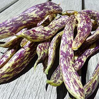 Best dragon tongue beans Reviews