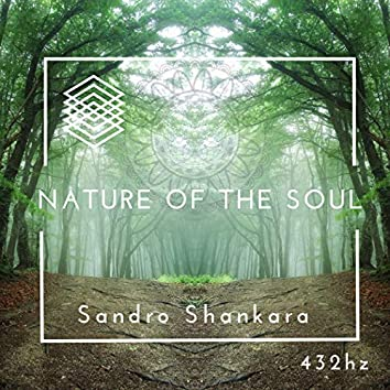 Nature of the Soul : 432Hz