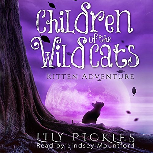 Kitten Adventure audiobook cover art