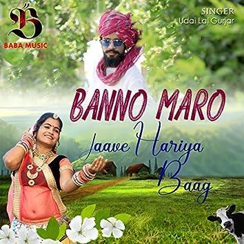 Banno Maro Jaave Hariya Baag