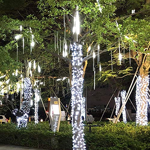Led Meteor Shower Tube Fairy Tale Light String Leggero Impermeabile Giardino natalizio Uso all'aperto AC110-240V 30cm SMD2835, Hudson Studio. (Color : Warm White)