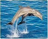 Mauspad / Mouse Pad aus Textil mit Rückseite aus Kautschuk rutschfest für alle Maustypen Motiv: zwei Delfine springend nebeneinander [08]