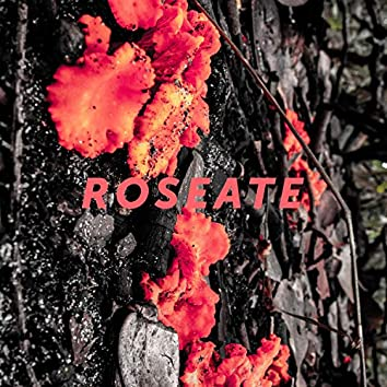 Roseate EP