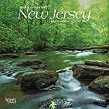 New Jersey Wild & Scenic 2022 7 x 7 Inch Monthly Mini Wall Calendar, USA United States of America Northeast State Nature