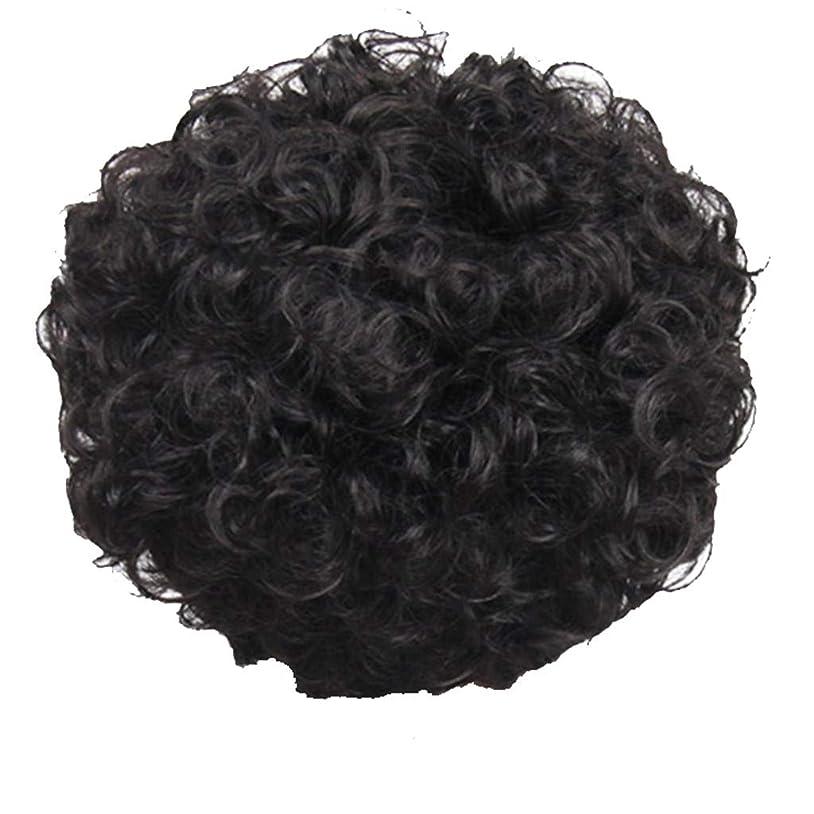 環境に優しい貸す踏みつけかつら、女性、短い髪、巻き毛、かつら、エルフカット、かつらキャップ、27cm
