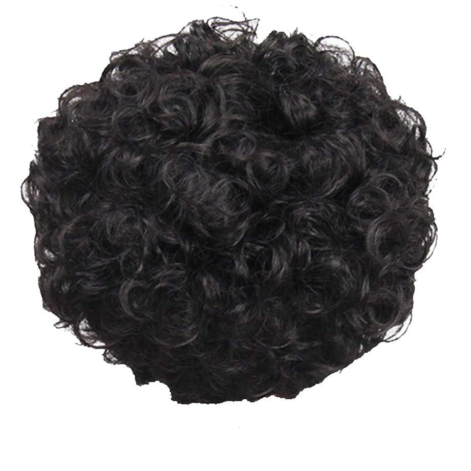 健全フェードアルネかつら、女性、短い髪、巻き毛、かつら、エルフカット、かつらキャップ、27cm