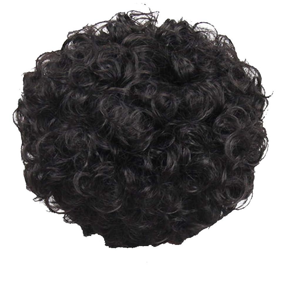 着替えるレースアレルギー性かつら、女性、短い髪、巻き毛、かつら、エルフカット、かつらキャップ、27cm
