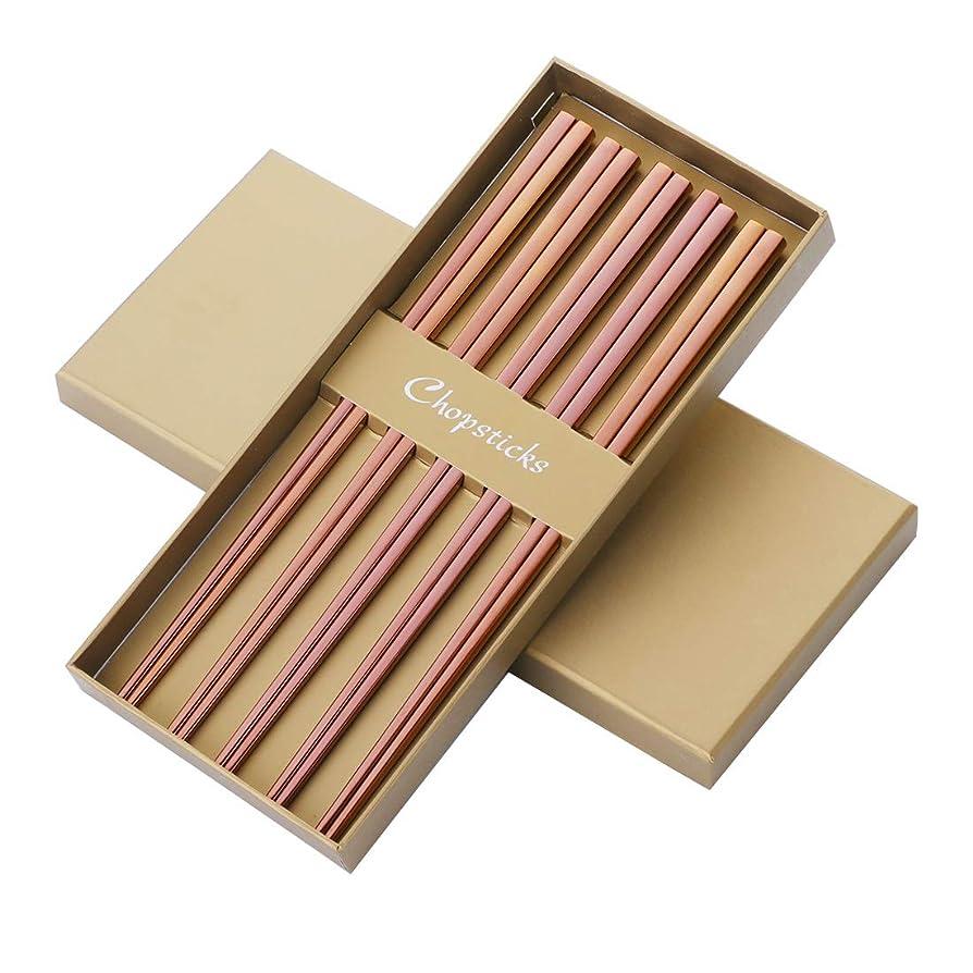 染料鎖インシュレータBisda 箸5点セット 18-8ステンレス 五人用 来客用 耐熱性 ファミリーセット 贈り物 普段使い 四角形状持ち手