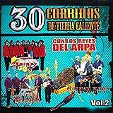 30 Corridos De Tierra Caliente - Con Los Reyes Del Arpa Vol.2
