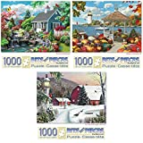 Bits And Pieces 1000 Piece Puzzles Review and Comparison